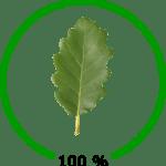 Nachhaltigkeitslevel_100%
